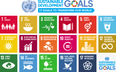 Webinar: Relationship Between the UN Sustainable Development Goals and the Guiding Principles